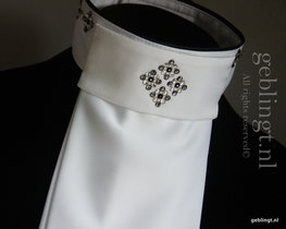 Plastron- Stock Tie - Worth every penny