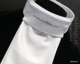 Plastron-Stock-Tie Stripe